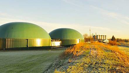 Auswirkungen der Corona-Pandemie auf die Bioenergiebranche: Ausnahmeregelungen und Fristverlängerungen